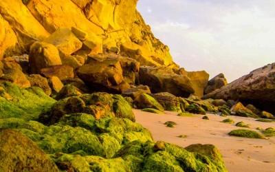 BO-Rox-1-Paradise-Beach-Asilah-Maroc